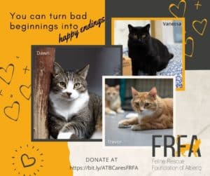 3 cats rescued by FRFA